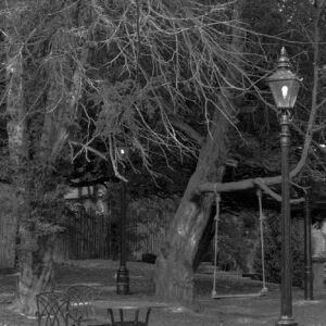 day out - black and white photograph of a table and chairs in a garden in the autumn