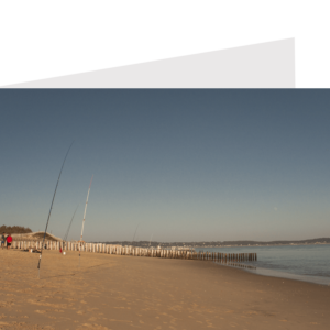 two people beside fishing rods on a beach, fishing