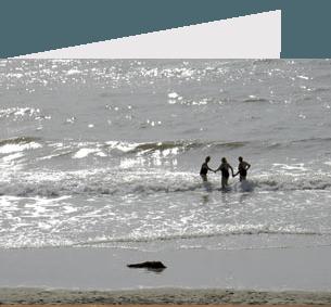 greetings cards; friendship; friends; happy; fun; sea; beach